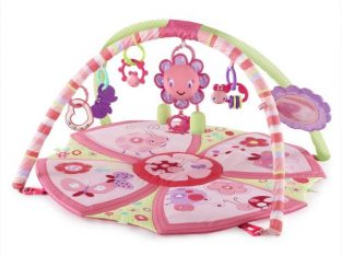Giggle Garden Activity Gym